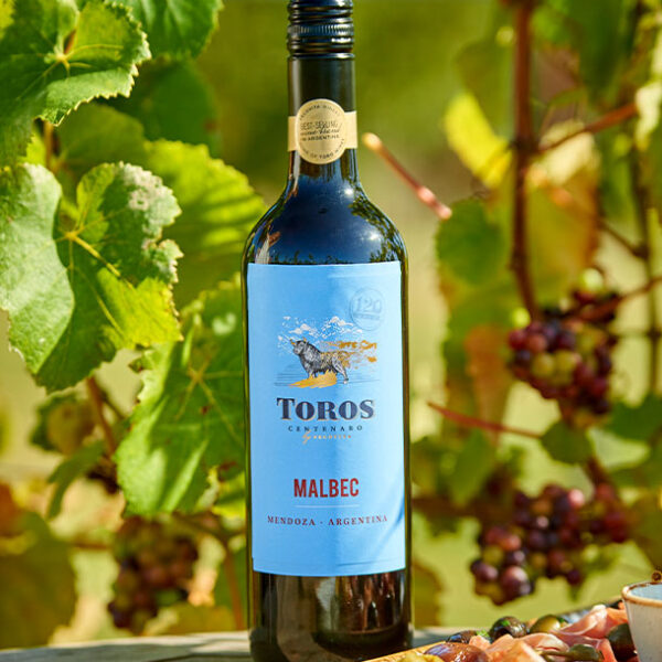 Toros Malbec in the Vineyard